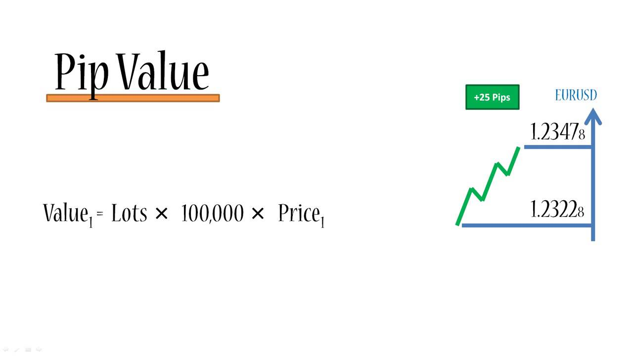 What is a pip value in forex